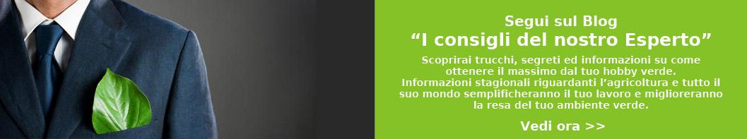 Home - Emporio Verde Sollini - I consigli dell'esperto